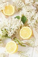 Fresh Elderflowers and Lemons