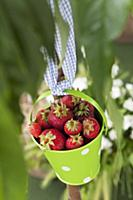 Fresh strawberries in a pastel-green bucket