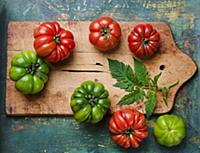 Green and red beefsteak tomatoes with leaves on a