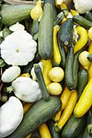 Various types of courgette and pumpkins