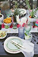 Potted succulents on table set in bright colours f