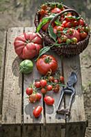 Assorted tomatoes in a wicker basket on wooden cra