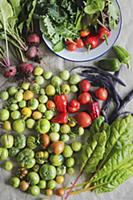 Freshly harvested vegetables with colourful tomato