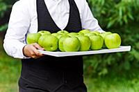 The waiter offers a green apple on a tray. Waiter