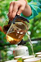 Pouring green tea on nature, outdoor.
