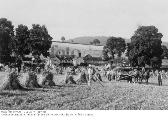 late nineteenth century farmers A fraternal organization of white farmers the farmers' alliance knights of labor, and populists: farmer-labor insurgency in the late-nineteenth-century.