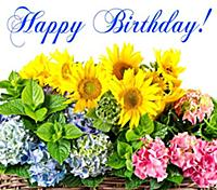 Happy Birthday! card conceptcolorful sunflowers an