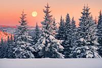 Морозный закат. Украинские Карпаты в снегу.