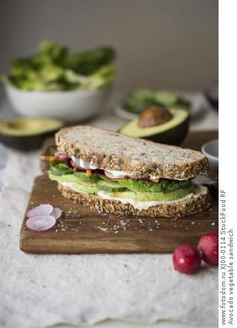 Avocado vegetable sandwich