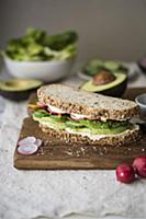 Avocado vegetable sandwich