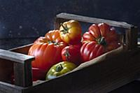 Various types of tomatoes in crate