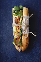 Classical banh-mi sandwich with grilled pork tende