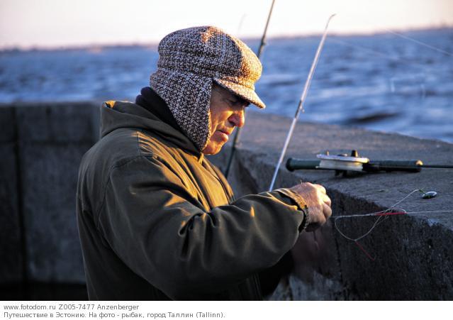 рыболовный таллин