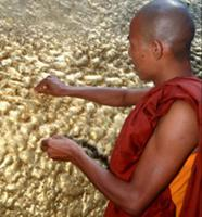 Золото для Будды
