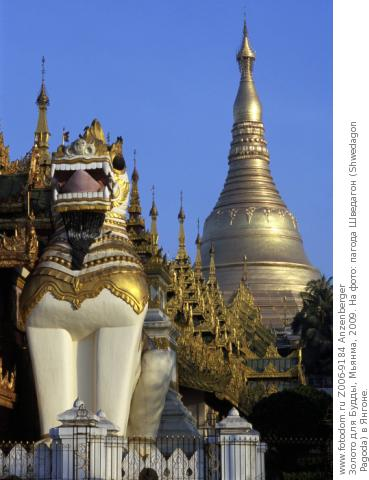 Золото для Будды, Мьянма, 2009. На фото: пагода Шведагон (Shwedagon Pagoda) в Янгоне.