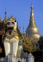 Золото для Будды, Мьянма, 2009. На фото: пагода Шв