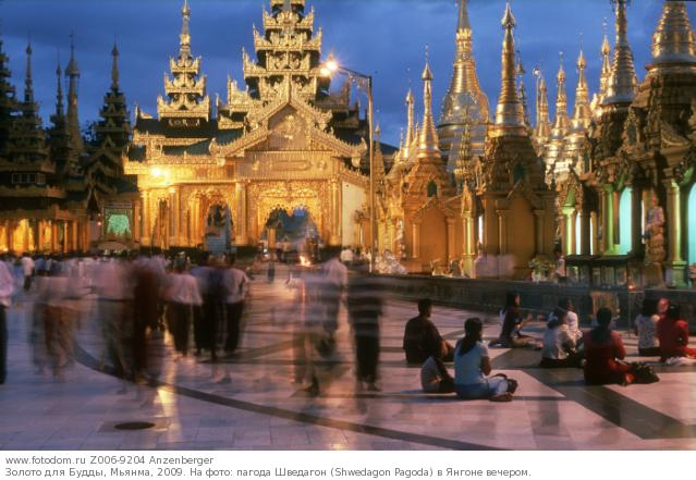 Золото для Будды, Мьянма, 2009. На фото: пагода Шведагон (Shwedagon Pagoda) в Янгоне вечером.