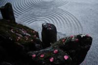 Коясан (Koyasan) - крупнейший действующий религиоз