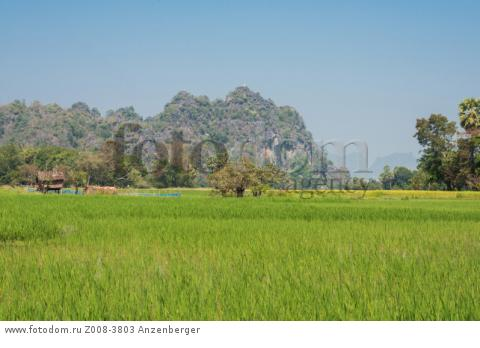 MYANMAR / Kayin State / Hpa-an / The capital of Kayin State is surrounded by picturesque karst landscape with rice fields В© Mario Weigt / Anzenberger