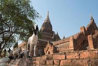 Мьянма. Паган