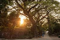 MYANMAR / Mon State / Mawlamyaing / Evening sun in