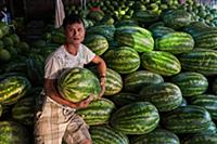 MYANMAR / Mon State / Mawlamyaing / Sale of big wa