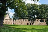GERMANY / Saxony / Nimbschen / The romantic ruin o