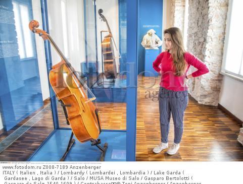 ITALY ( Italien , Italia ) / Lombardy ( Lombardei , Lombardia ) / Lake Garda ( Gardasee , Lago di Garda ) / Salo / MUSA Museo di Salo / Gasparo Bertolotti ( Gasparo da Salт 1540-1609 ) / Contrabasso  © Toni Anzenberger / Anzenberger