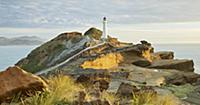 Castle Point Lighthouse, Sandstone, Wellington, No