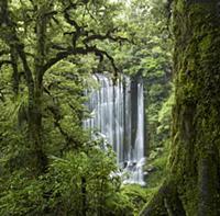 Korokoro Falls, Te Urewera National Park, Hawke