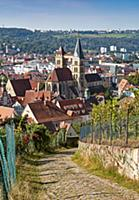 Vineyards, cathedral and old town of Esslingen, Ba
