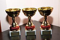 Вручение премии Российской Профессиональной Премии