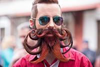 День бородача