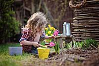 Игры цветы играть онлайн бесплатно 996