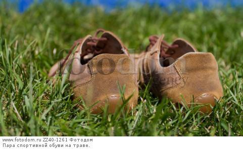 Пара спортивной обуви на траве.