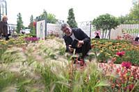 Валерий Яременко. VIII Международный фестиваль сад
