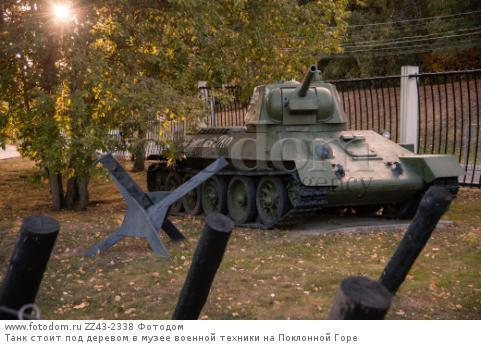 Танк стоит под деревом в музее военной техники на Поклонной Горе