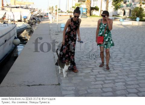 Тунис. На снимке: Улицы Туниса.