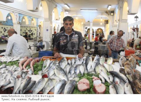 Тунис. На снимке: Рыбный рынок.