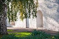 Ярославль, Спасо-Преображенский монастырь, окна на