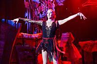 Балетно-цирковой спектакль «Балерина в зазеркалье цирка»
