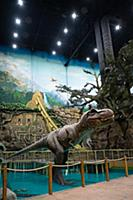Тематический парк развлечений «Остров Мечты». Моск