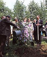 Традиция высадки деревьев. Государственный мемориа