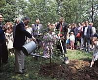 Традиция в памятные дни сажать дерево; Государстве