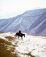 На коне с малых лет. Молодой мужчина на лошади. В
