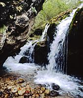 Водопад. В горах Чечни и Ингушетии. СССР. 1980-198