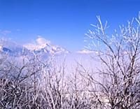 Вершины. В горах Чечни и Ингушетии. СССР. 1980-198