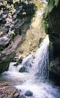 Водопад В горах Чечни и Ингушетии. СССР. 1980-1981