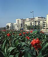 Жизнь Грозного. Чечено-Ингушская АССР. 1981-1982 годы.