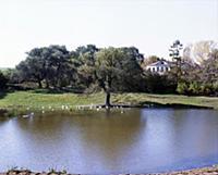На земле Тульской. 1974-1980 годы.  (При использов